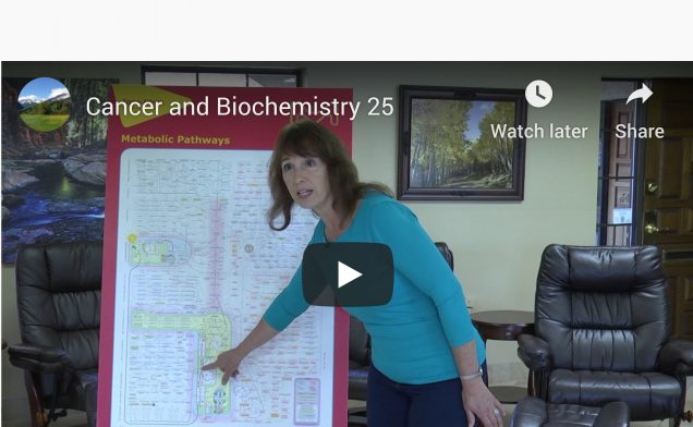 Cancer & Biochemistry 25